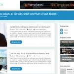 WordPress Blog Teması BangBox