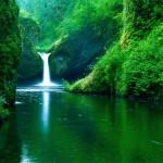 Doğa ve manzara resimleri ekran koruyucusu indir