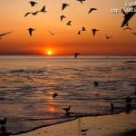Doğa ve manzara resimleri ekran koruyucusu 2
