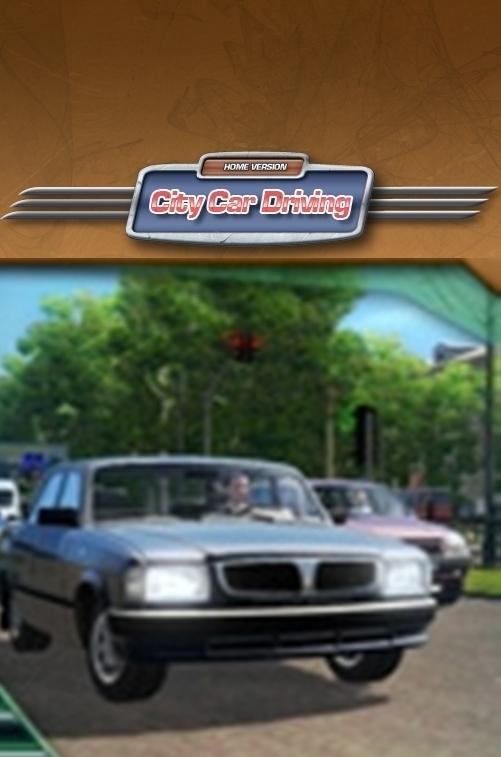 City Car Driving İndir