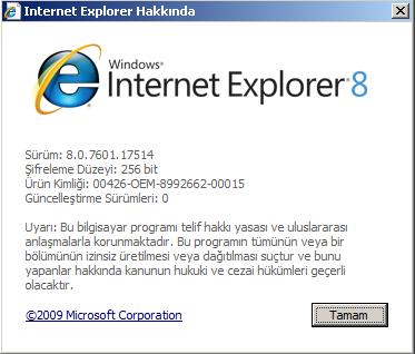 internet explorer sürüm bilgisi