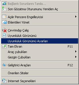 internet explorer uyumluluk görünümü ayarları